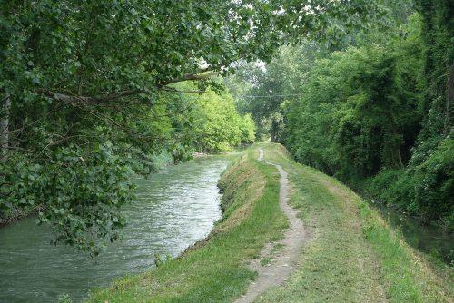bologna navile canal walk
