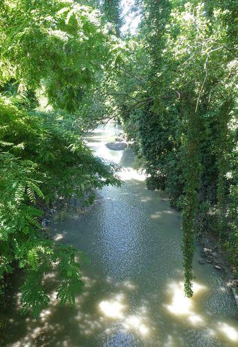 Navile in Parco Villa Angeletti bolgns