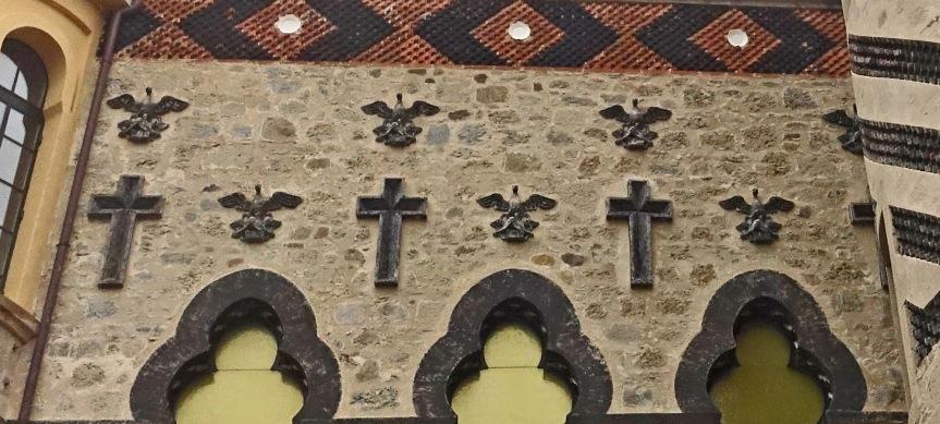 Rochetta mattei pelicans