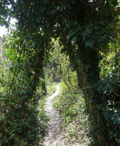 bologna hills 5