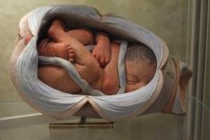Bologna Poggi museum foetus model